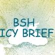 bshpolicybrief1.jpg