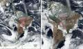 Amazon fires 'show need to improve EU science diplomacy'