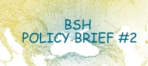 """Policy brief on thematic patterns of cross-border S&T cooperation based on co-publication and co-patent analysis"" [BSH Policy Brief #2]"